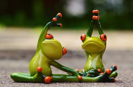 frogs office fitness